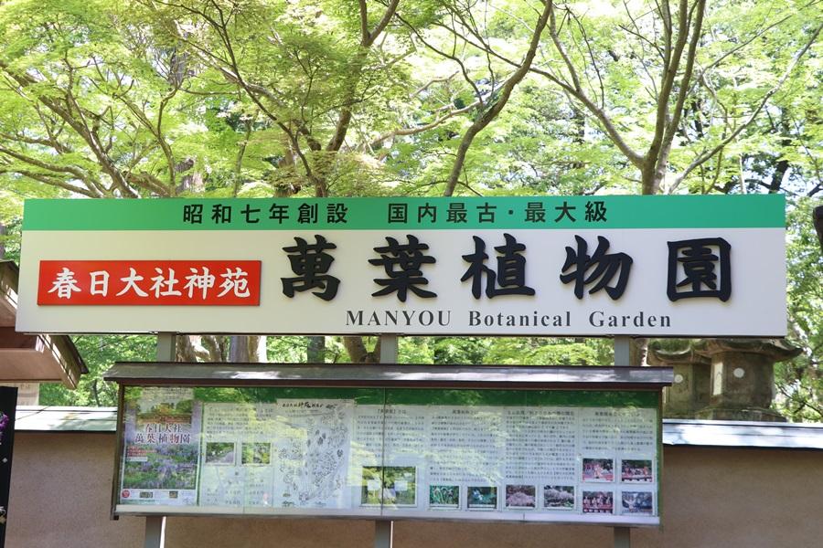 20180501 1 - 春日大社神苑・萬葉植物園へ行ってきました。