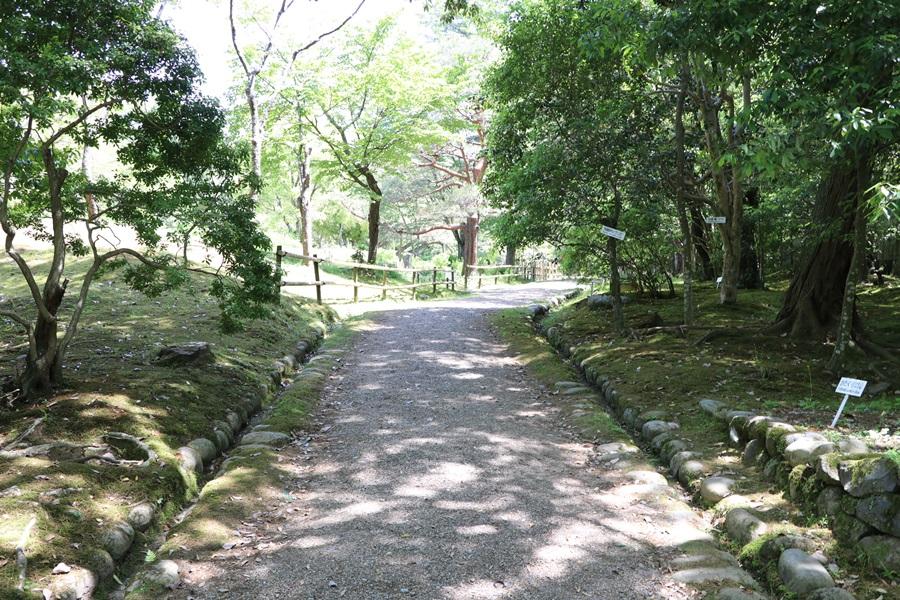 20180501 3 - 春日大社神苑・萬葉植物園へ行ってきました。