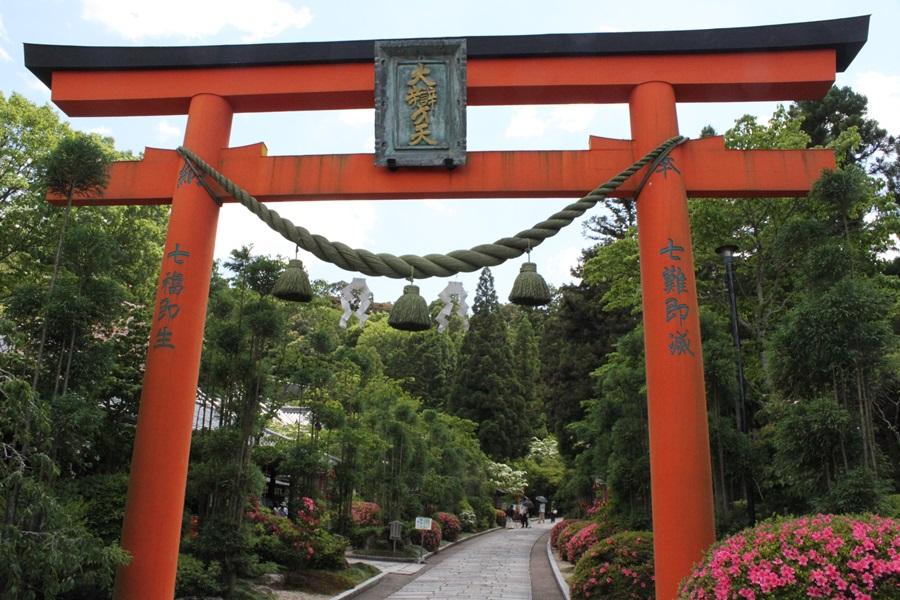 20180513 8 - バラのお寺・霊山寺