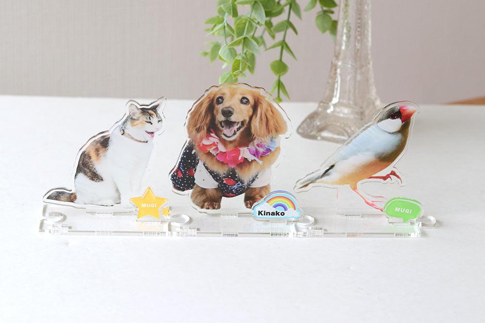 shop - 犬猫ちゃんのアクリルスタンド!うちの子の写真を立体インテリアに。ペットメモリアルな贈り物。